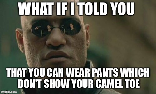 Matrix Morpheus Meme | WHAT IF I TOLD YOU THAT YOU CAN WEAR PANTS WHICH DON'T SHOW YOUR CAMEL TOE | image tagged in memes,matrix morpheus | made w/ Imgflip meme maker
