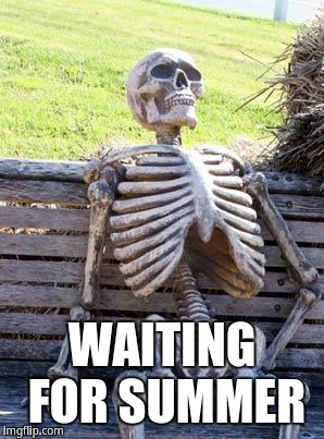 Waiting for summer | WAITING FOR SUMMER | image tagged in memes,waiting skeleton | made w/ Imgflip meme maker
