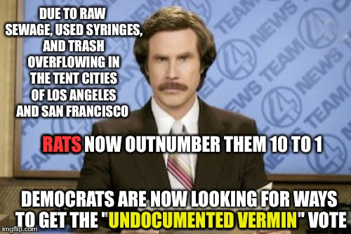 Ron Burgundy Meme | DUE TO RAW SEWAGE, USED SYRINGES, AND TRASH OVERFLOWING IN THE TENT CITIES OF LOS ANGELES AND SAN FRANCISCO DEMOCRATS ARE NOW LOOKING FOR WA | image tagged in memes,ron burgundy | made w/ Imgflip meme maker