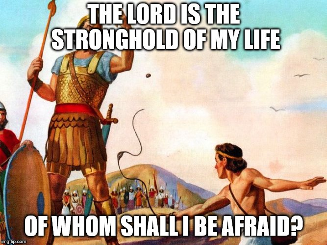 David and Goliath | THE LORD IS THE STRONGHOLD OF MY LIFE OF WHOM SHALL I BE AFRAID? | image tagged in david and goliath | made w/ Imgflip meme maker
