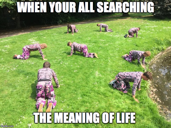 meaning of life | WHEN YOUR ALL SEARCHING THE MEANING OF LIFE | image tagged in life,questioning,the meaning of life,the search continues | made w/ Imgflip meme maker