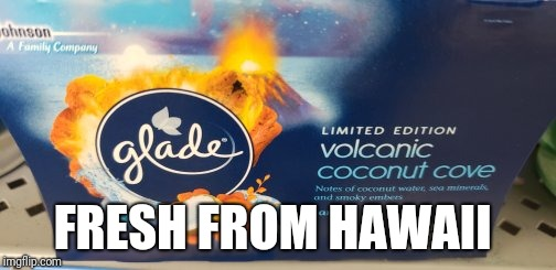FRESH FROM HAWAII | image tagged in hawaii,funny,funny meme | made w/ Imgflip meme maker