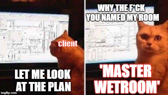 LET ME LOOK AT THE PLAN WHY THE F*CK  YOU NAMED MY ROOM 'MASTER WETROOM' client | image tagged in architect cat | made w/ Imgflip meme maker