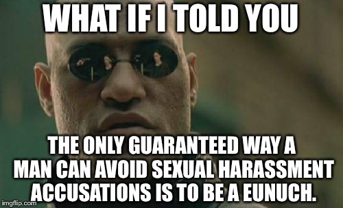 If you have balls you can be accused | WHAT IF I TOLD YOU THE ONLY GUARANTEED WAY A MAN CAN AVOID SEXUAL HARASSMENT ACCUSATIONS IS TO BE A EUNUCH. | image tagged in memes,matrix morpheus,eunuch,sexual harassment,battle of the sexes,men and women | made w/ Imgflip meme maker