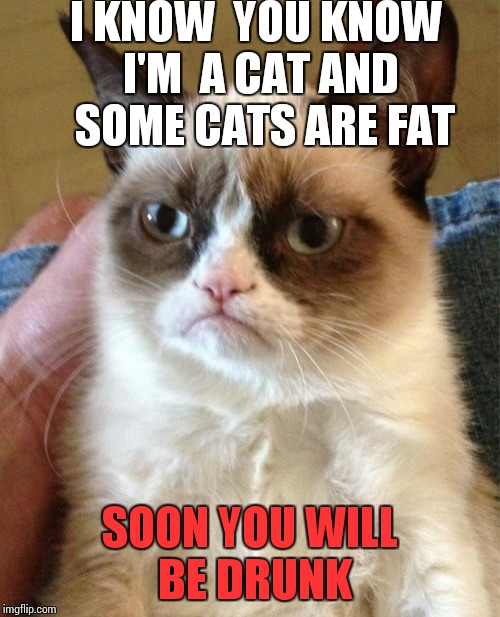 Grumpy Cat Meme | I KNOW  YOU KNOW I'M  A CAT AND  SOME CATS ARE FAT SOON YOU WILL BE DRUNK | image tagged in memes,grumpy cat | made w/ Imgflip meme maker