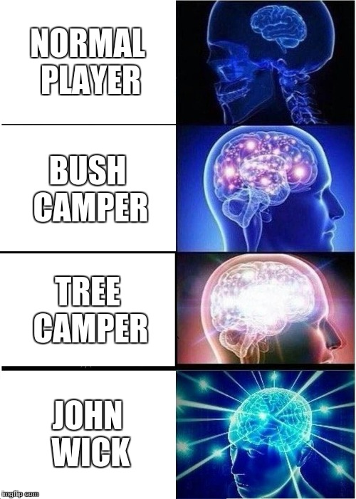 Expanding Brain Meme | NORMAL PLAYER BUSH CAMPER TREE CAMPER JOHN WICK | image tagged in memes,expanding brain | made w/ Imgflip meme maker
