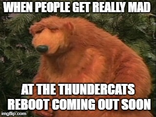 People Complaining about ThunderCats Roar | WHEN PEOPLE GET REALLY MAD AT THE THUNDERCATS REBOOT COMING OUT SOON | image tagged in memes,thundercats,frustrated,bear,animals,animation | made w/ Imgflip meme maker