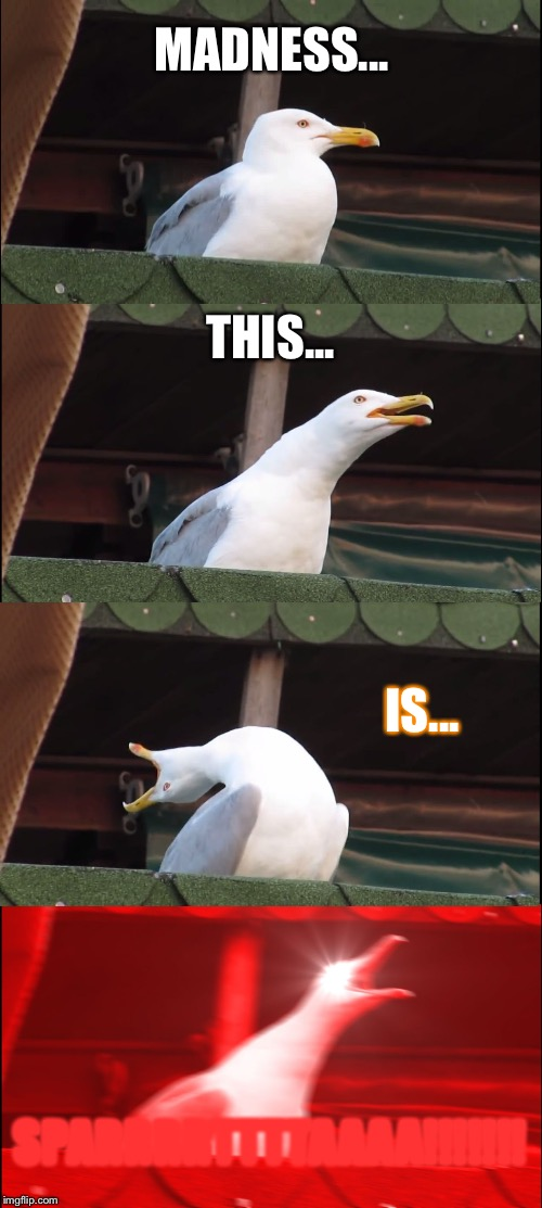Inhaling Seagull Meme | MADNESS... THIS... IS... SPARRRRTTTTAAAA!!!!!!! | image tagged in memes,inhaling seagull | made w/ Imgflip meme maker