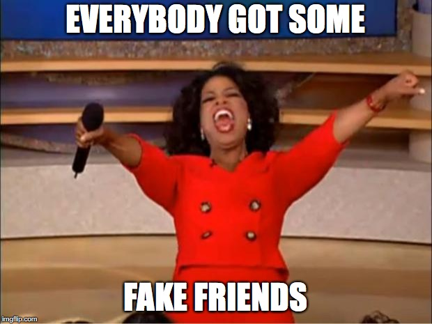 Oprah You Get A Meme | EVERYBODY GOT SOME FAKE FRIENDS | image tagged in memes,oprah you get a | made w/ Imgflip meme maker