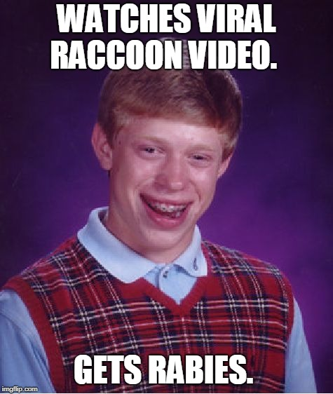 Bad Luck Brian Meme | WATCHES VIRAL RACCOON VIDEO. GETS RABIES. | image tagged in memes,bad luck brian | made w/ Imgflip meme maker