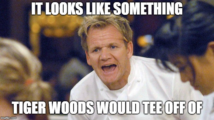 Gordon | IT LOOKS LIKE SOMETHING TIGER WOODS WOULD TEE OFF OF | image tagged in chef gordon ramsay,tiger woods | made w/ Imgflip meme maker