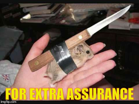 Lock and Load Hamster | FOR EXTRA ASSURANCE | image tagged in lock and load hamster | made w/ Imgflip meme maker
