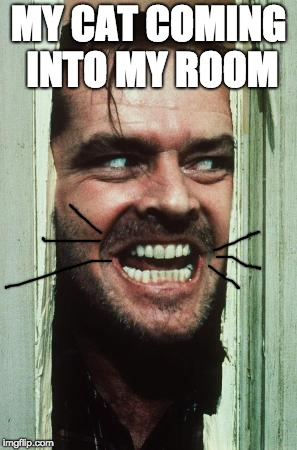 Heres Johnny | MY CAT COMING INTO MY ROOM | image tagged in memes,heres johnny | made w/ Imgflip meme maker