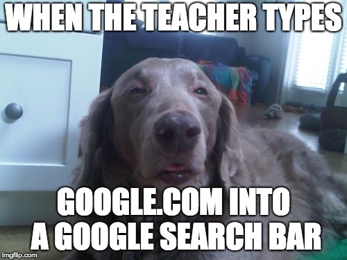 High Dog Meme | WHEN THE TEACHER TYPES GOOGLE.COM INTO A GOOGLE SEARCH BAR | image tagged in memes,high dog | made w/ Imgflip meme maker