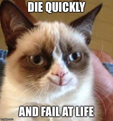 grumpy smile | DIE QUICKLY AND FAIL AT LIFE | image tagged in grumpy smile | made w/ Imgflip meme maker