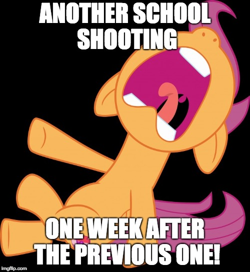 Wake up America! | ANOTHER SCHOOL SHOOTING ONE WEEK AFTER THE PREVIOUS ONE! | image tagged in frightened scootaloo,memes,school shooting | made w/ Imgflip meme maker