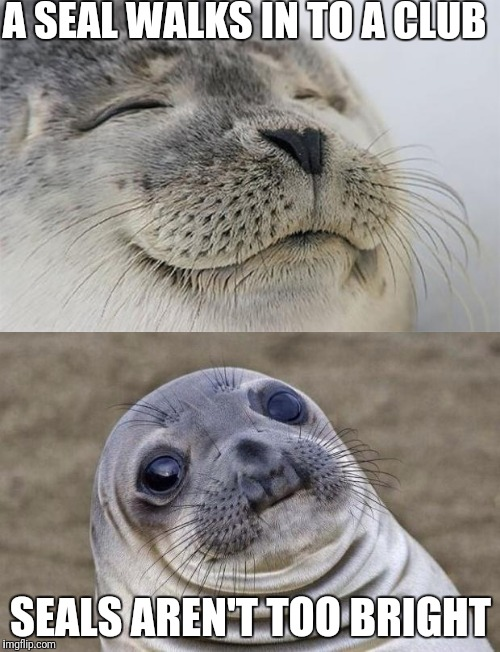 A seal went clubbing  | A SEAL WALKS IN TO A CLUB SEALS AREN'T TOO BRIGHT | image tagged in awkward moment sealion | made w/ Imgflip meme maker