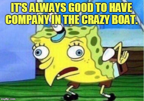 Mocking Spongebob Meme | IT'S ALWAYS GOOD TO HAVE COMPANY IN THE CRAZY BOAT. | image tagged in memes,mocking spongebob | made w/ Imgflip meme maker
