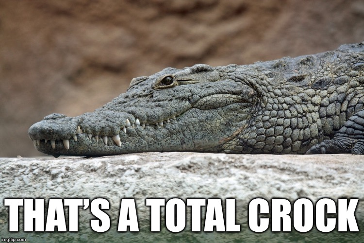 THAT'S A TOTAL CROCK | made w/ Imgflip meme maker