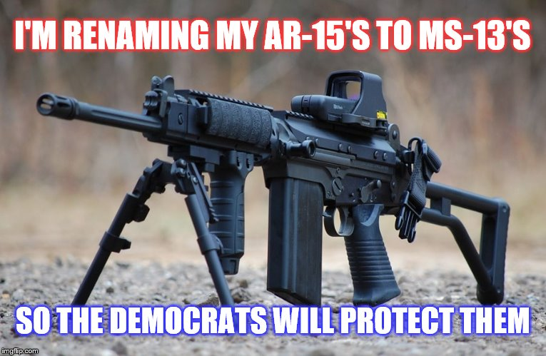 Loophole the Left | I'M RENAMING MY AR-15'S TO MS-13'S SO THE DEMOCRATS WILL PROTECT THEM | image tagged in politics,guns,democrats | made w/ Imgflip meme maker