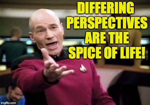 Picard Wtf Meme | DIFFERING PERSPECTIVES ARE THE SPICE OF LIFE! | image tagged in memes,picard wtf | made w/ Imgflip meme maker