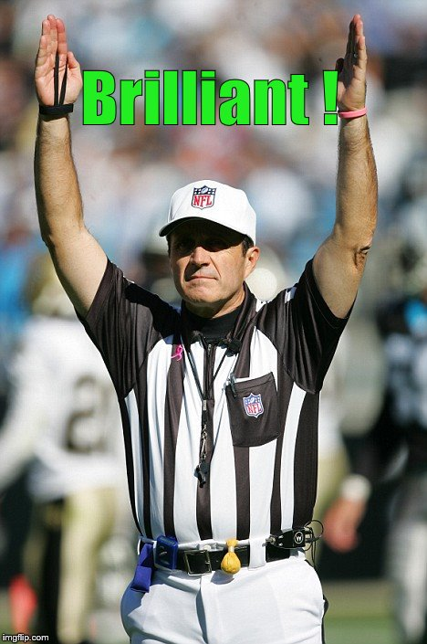 TOUCHDOWN! | Brilliant ! | image tagged in touchdown | made w/ Imgflip meme maker