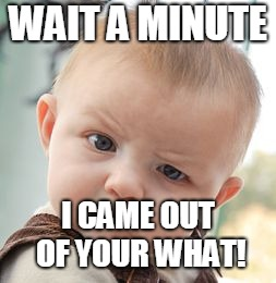 Skeptical Baby Meme | WAIT A MINUTE I CAME OUT OF YOUR WHAT! | image tagged in memes,skeptical baby | made w/ Imgflip meme maker