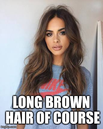 LONG BROWN HAIR OF COURSE | made w/ Imgflip meme maker