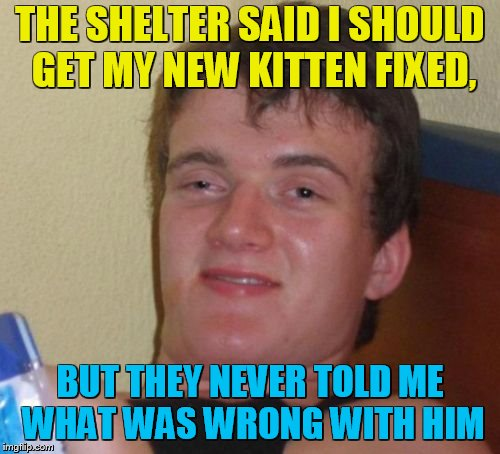 10 Guy Meme | THE SHELTER SAID I SHOULD GET MY NEW KITTEN FIXED, BUT THEY NEVER TOLD ME WHAT WAS WRONG WITH HIM | image tagged in memes,10 guy | made w/ Imgflip meme maker