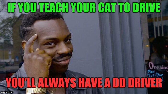 Drunk driving | IF YOU TEACH YOUR CAT TO DRIVE YOU'LL ALWAYS HAVE A DD DRIVER | image tagged in memes,roll safe think about it,drinking | made w/ Imgflip meme maker