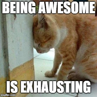 awesome | BEING AWESOME IS EXHAUSTING | image tagged in awesome,exhausted | made w/ Imgflip meme maker