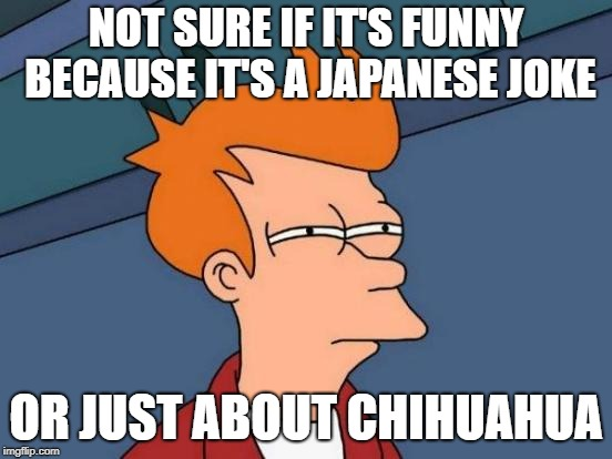 Futurama Fry Meme | NOT SURE IF IT'S FUNNY BECAUSE IT'S A JAPANESE JOKE OR JUST ABOUT CHIHUAHUA | image tagged in memes,futurama fry | made w/ Imgflip meme maker