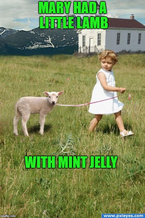 It followed her to school one day. |  MARY HAD A LITTLE LAMB; WITH MINT JELLY | image tagged in lamb,lamb sauce,mary | made w/ Imgflip meme maker