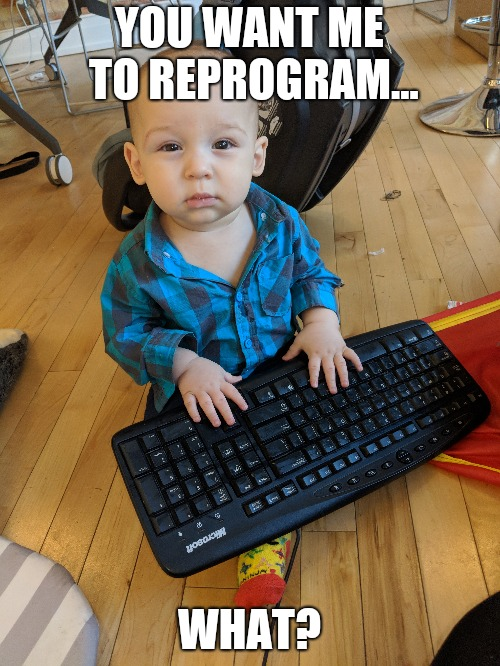 Reprogram | YOU WANT ME TO REPROGRAM... WHAT? | image tagged in programming | made w/ Imgflip meme maker