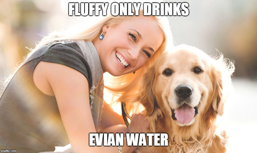 FLUFFY ONLY DRINKS EVIAN WATER | image tagged in dogs,life,memes | made w/ Imgflip meme maker