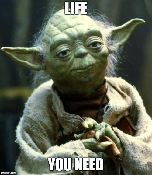 Star Wars Yoda Meme | LIFE YOU NEED | image tagged in memes,star wars yoda | made w/ Imgflip meme maker