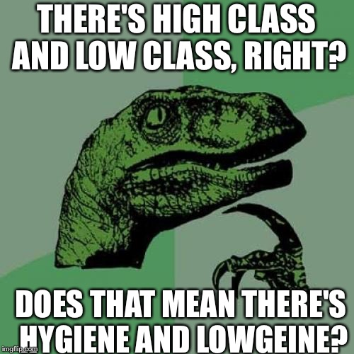 Philosoraptor |  THERE'S HIGH CLASS AND LOW CLASS, RIGHT? DOES THAT MEAN THERE'S HYGIENE AND LOWGEINE? | image tagged in philosoraptor,memes,hygiene | made w/ Imgflip meme maker