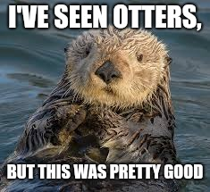 I'VE SEEN OTTERS, BUT THIS WAS PRETTY GOOD | made w/ Imgflip meme maker