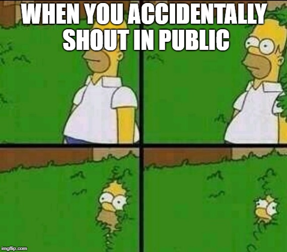 Homer Simpson Nope | WHEN YOU ACCIDENTALLY SHOUT IN PUBLIC | image tagged in homer simpson nope | made w/ Imgflip meme maker