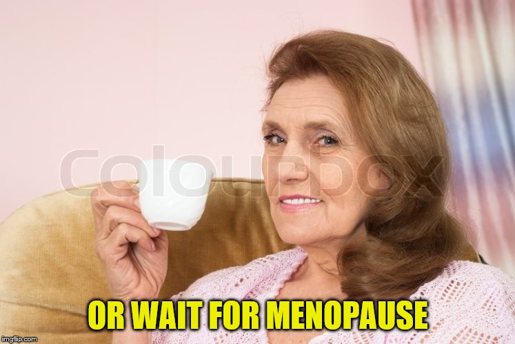 OR WAIT FOR MENOPAUSE | made w/ Imgflip meme maker