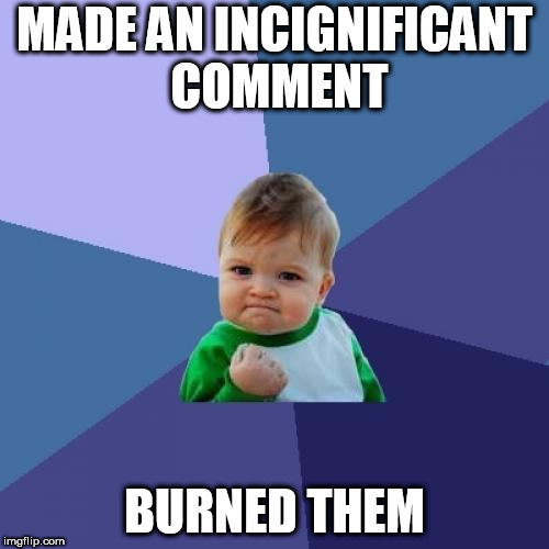 Success Kid Meme | MADE AN INCIGNIFICANT COMMENT BURNED THEM | image tagged in memes,success kid | made w/ Imgflip meme maker