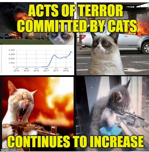 Serious Situation | ACTS OF TERROR COMMITTED BY CATS CONTINUES TO INCREASE | image tagged in memes,blank starter pack,cats,caturday | made w/ Imgflip meme maker