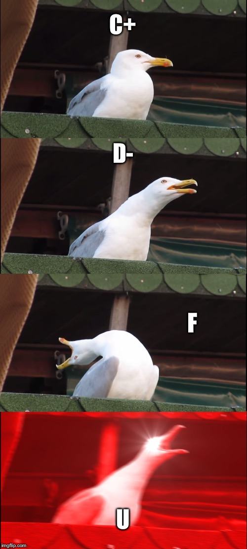 Inhaling Seagull Meme | C+ D- F U | image tagged in memes,inhaling seagull | made w/ Imgflip meme maker