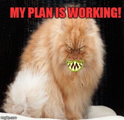 MY PLAN IS WORKING! | made w/ Imgflip meme maker