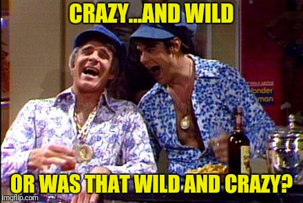 CRAZY...AND WILD OR WAS THAT WILD AND CRAZY? | made w/ Imgflip meme maker