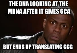 Kevin Hart Meme | THE DNA LOOKING AT THE MRNA AFTER IT GIVES GCA BUT ENDS UP TRANSLATING GCG | image tagged in memes,kevin hart the hell | made w/ Imgflip meme maker