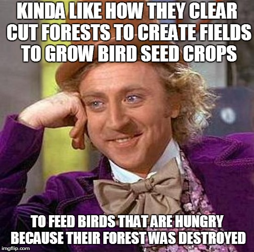 Creepy Condescending Wonka Meme | KINDA LIKE HOW THEY CLEAR CUT FORESTS TO CREATE FIELDS TO GROW BIRD SEED CROPS TO FEED BIRDS THAT ARE HUNGRY BECAUSE THEIR FOREST WAS DESTRO | image tagged in memes,creepy condescending wonka | made w/ Imgflip meme maker