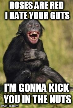 Laughing monkey | ROSES ARE RED I HATE YOUR GUTS I'M GONNA KICK YOU IN THE NUTS | image tagged in laughing monkey | made w/ Imgflip meme maker