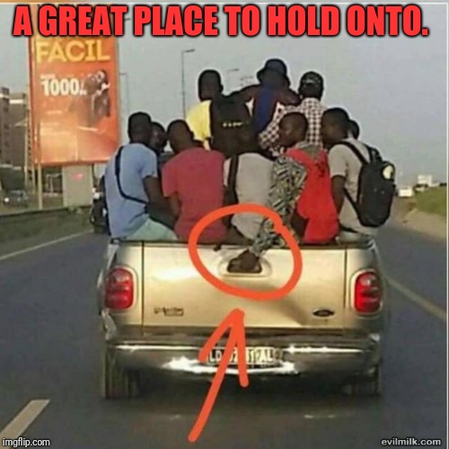 Hold On! |  A GREAT PLACE TO HOLD ONTO. | image tagged in safety first,funny meme | made w/ Imgflip meme maker