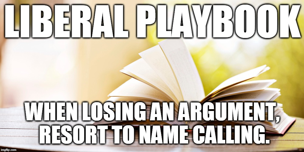 Liberal playbook | LIBERAL PLAYBOOK WHEN LOSING AN ARGUMENT, RESORT TO NAME CALLING. | image tagged in liberal,stupid liberals,liberals,liberal logic | made w/ Imgflip meme maker